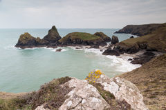 Kynance cove in cornwall england uk Royalty Free Stock Photography
