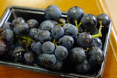 Kyoho grapes giant mountain grapes. Close-up of Kyoho grapes giant mountain grapes at supermarket in Toyama, Japan Stock Image