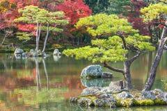 Kyoko-qui ou lagoa do espelho no templo de Kinkaku-ji em Kyoto Fotografia de Stock Royalty Free