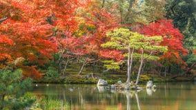 Kyoko-qui ou lagoa do espelho no templo do kinkakuji Imagem de Stock