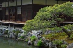 kyoto Arkivbilder