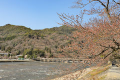 Kyoto Arashiyama - Katsura river side view - Kyoto Japan. Sunday Morning Royalty Free Stock Images