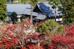 Kyoto autumn Stock Photography