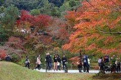 Kyoto autumn Royalty Free Stock Image