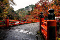 Kyoto autumn season. Autumn in kyoto, japan with beautiful color leaves Royalty Free Stock Images