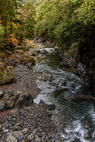 Kyoto autumn season Royalty Free Stock Photography