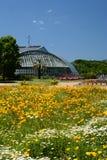 Kyoto botanisk trädgård japan Royaltyfri Bild