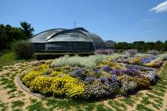 Kyoto botanisk trädgård japan royaltyfri foto