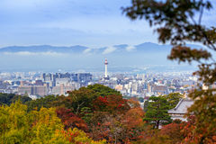 Kyoto city and tower with autumn trees Royalty Free Stock Photo