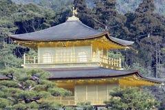 Kyoto - der goldene Pavillion Stockfotografie