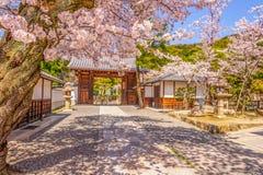 Kyoto et Cherry Blossom Image libre de droits