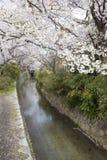 kyoto filosof s går Arkivbilder
