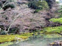 kyoto fjäder royaltyfria bilder