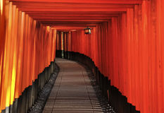 Kyoto fushimi inari. Fushimi Inari Shrine is an important Shinto shrine in southern Kyoto. It is famous for its thousands of vermilion torii gates, which Stock Photography