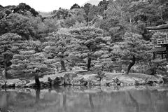 Kyoto garden Stock Photography