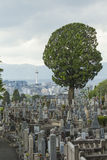 KYOTO, GIAPPONE - 1° MAGGIO: Cimitero di Higashi Otani il 1° maggio 2014 io Fotografia Stock Libera da Diritti