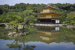 Kyoto Golden Pavilion ( Kinkakuji Temple ). Japan Stock Photography