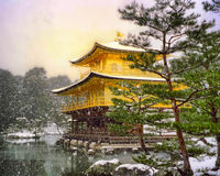 Kyoto-goldener Pavillion Lizenzfreies Stockfoto