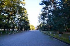 Kyoto Gyoen trädgård och Mt Daimonji i aftonen, Kyoto Royaltyfri Bild