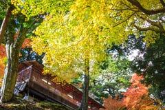 Kyoto, JAPÃO - 16 de novembro de 2013: Um pavilhão no jingo-ji, Japão Jing Fotos de Stock Royalty Free