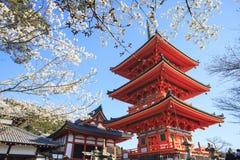 Kyoto, Japão no templo de Kiyomizu-dera durante a queda Imagens de Stock Royalty Free