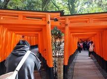 KYOTO, JAPÓN - 23 DE OCTUBRE DE 2012: Un turista recorre a través de las puertas del torii Fotografía de archivo
