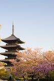 Kyoto, Japón en el templo de Toji Fotos de archivo