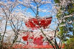 Kyoto Japón en primavera imagen de archivo libre de regalías