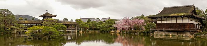 Ancient wooden palace with cherry blossom stock images