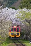 KYOTO, JAPAN - APRIL 06 : Sakano Romantic Train, a sightseeing r. Etro train that runs along mountain pass through sakura tunnel on 06 April 2016 Stock Photo