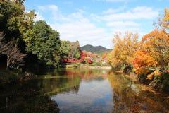 Kyoto Japan arashiyama. Landscapes autumn of Japan Kyoto,use for puzzle Stock Photography