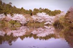 Kyoto Royalty Free Stock Photo