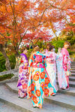 Kyoto, JAPAN-December 2: Beautiful  Young woman wearing a kimono Stock Images