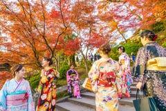 Kyoto, JAPAN-December 2: Beautiful  Young woman wearing a kimono Stock Photography