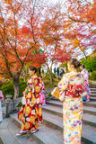 Kyoto, JAPAN-December 2: Beautiful  Young woman wearing a kimono Royalty Free Stock Images
