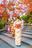 Kyoto, JAPAN-December 2: Beautiful  Young woman wearing a kimono Royalty Free Stock Photography