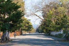 KYOTO, JAPAN - 11. Januar 2015: Garten Kyotos Gyoen ein berühmtes Histori Lizenzfreie Stockbilder