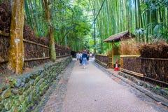 KYOTO JAPAN - JULI 05, 2017: Oidentifierat folk som går i en bana på den härliga bambuskogen på Arashiyama, Kyoto Arkivfoton