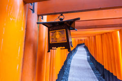 Lantern and Tori Gates at Fushimi Inari Shrine Royalty Free Stock Images
