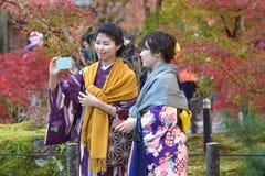 KYOTO, JAPAN - NOV 24: autumn foliage at Eikando Temple on Novem Royalty Free Stock Image