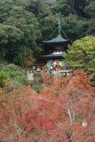 KYOTO, JAPAN - NOV 24: autumn foliage at Eikando Temple on Novem Stock Photography