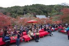 KYOTO, JAPAN - NOV 24: autumn foliage at Eikando Temple on Novem Stock Photos