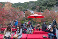 KYOTO, JAPAN - NOV 24: autumn foliage at Eikando Temple on Novem Stock Image