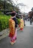 Women wear Japanese kimono on street. Kyoto, Japan - Nov 20, 2016. Japanese women wearing traditional dress Kimono on the historic street in downtown of Kyoto royalty free stock images