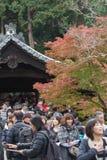 KYOTO, JAPAN - NOV 28, 2015: Many tourists visit the Tofukuji Te Royalty Free Stock Photo