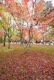 KYOTO, JAPAN - NOV 28, 2015: Many tourists visit the Tofukuji  Royalty Free Stock Photography