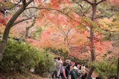 KYOTO, JAPAN - NOV 28, 2015: Many tourists visit the Tofukuji Royalty Free Stock Images