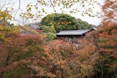 KYOTO, JAPAN - NOV 28, 2015: Many tourists visit the Tofukuji  Stock Photography