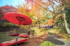 Kyoto, JAPAN - Nov 16, 2013: A pavilion at Jingo-ji, Japan. Jing Royalty Free Stock Image