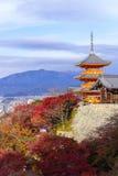 Kyoto Japan - NOVEMBER 25, 2016 - den härliga Momiji hösten c Arkivfoton